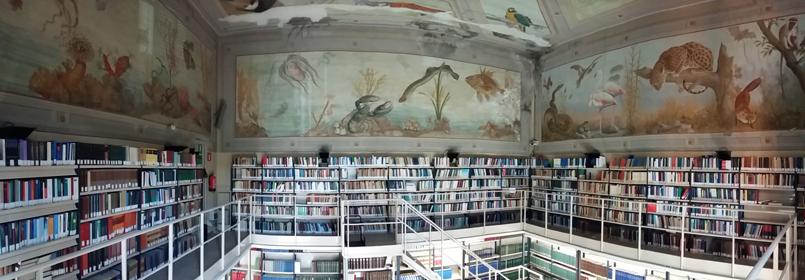 Biblioteca di Giurisprudenza
