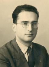 Domenico Andreani